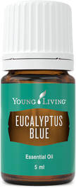 The Oil House | Eucalyptus | Eucalyptus Blue Essential Oil is invigorating when diffused.