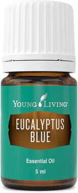 Eucalyptus Essential Oil for Cleaning | The Oil House