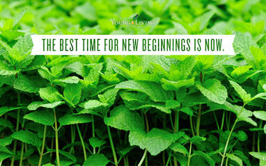 The Oil House | The Best Time for New Beginnings is Now. Start your essential oil journey with us today!